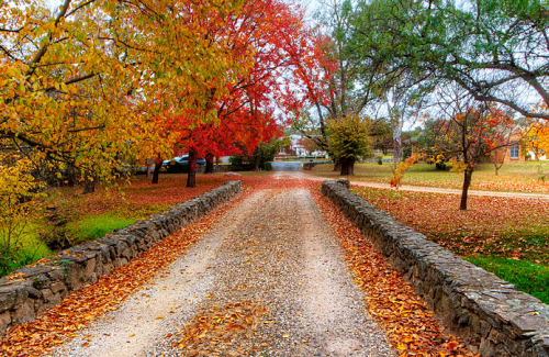 A beautiful hand carved stone bridge leads into a rural scene of Autumn colour.